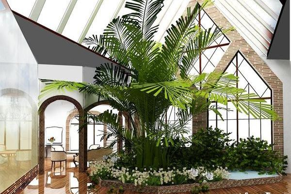 Местоположение пальмы в помещении