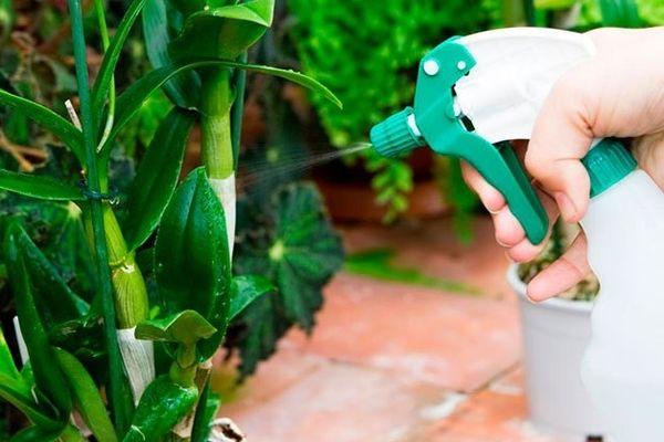 Тоник для орхидей