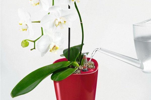 Приспособления для орхидей