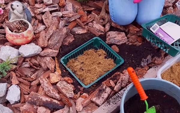 Почва для посадки цветов