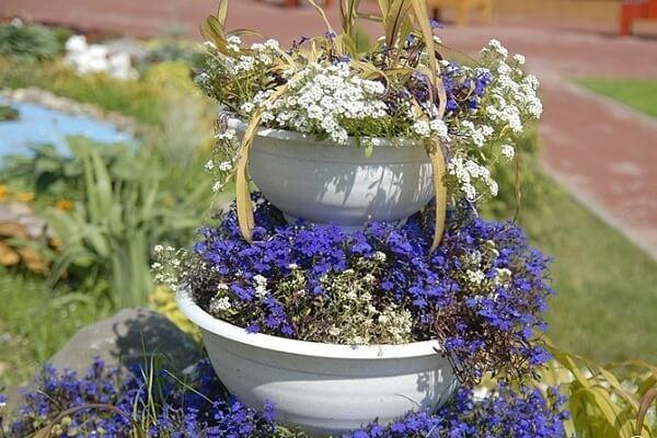 Цветок в башне из вазонов